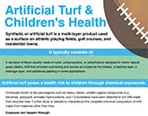 Artificial Turf infographic