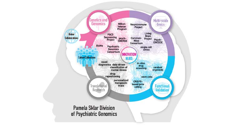 Illustration of Pamela Sklar Division of Psychiatric Genomics Innovation Hubs