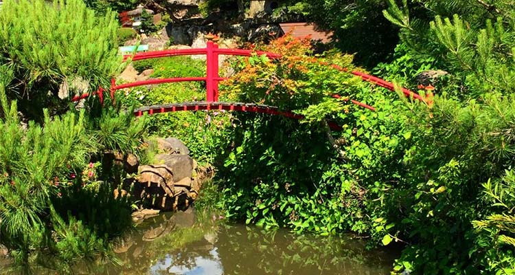 A pond with an arced red bridge