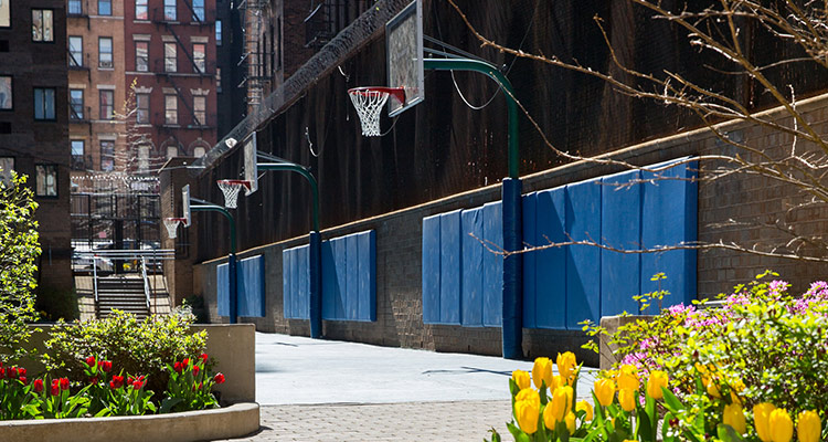 Basketball court with flowers planted on the sideline