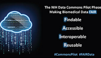 ISMMS and 11 other recipients of the award will form the nucleus of an NIH Data Commons Pilot Phase Consortium