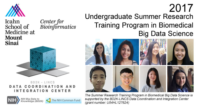 Images of participants in the 2017 Undergraduate Summer Research Training Program in Biomedical Big Data Science