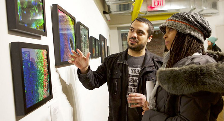 Man and woman in gallery look at multiple medical art images of brain neurons.