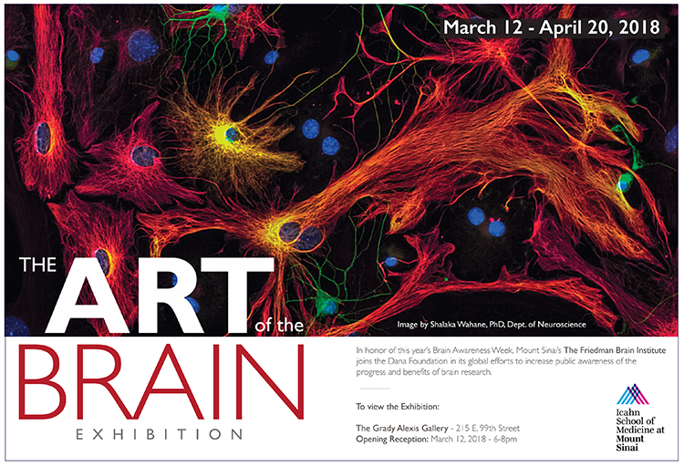 Art of the Brain