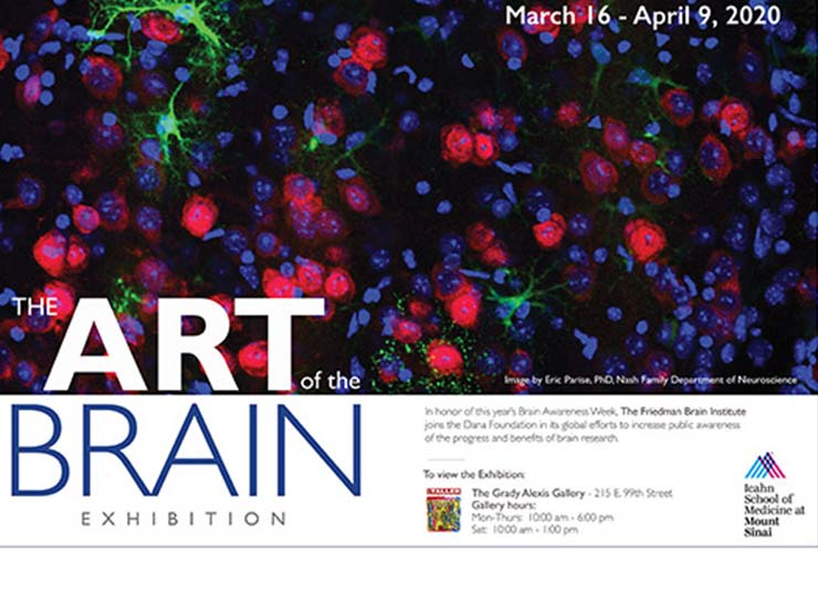 Art of the brain exhibition flyer
