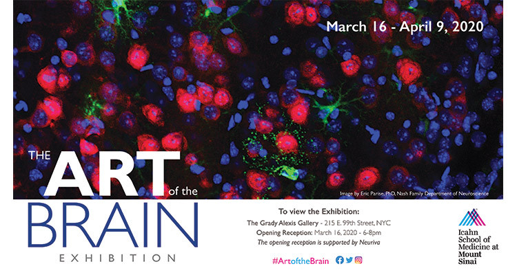 Image of Art of the Brain poster