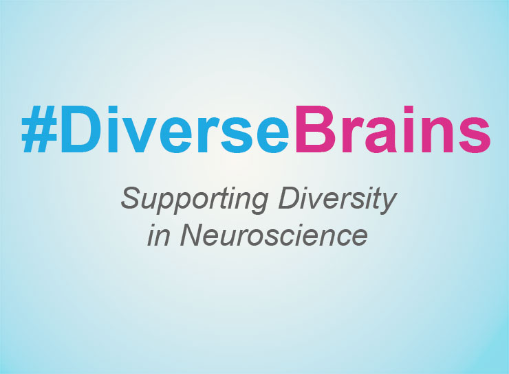 Image of text promoting Diverse Brains, which supports diversity in neuroscience