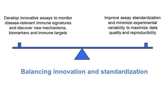 Scale balancing innovation vs standardization