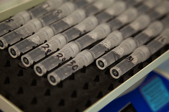 image of test tubes