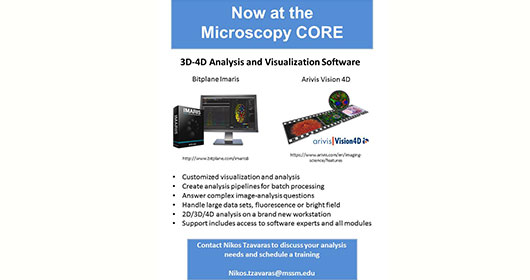 Visualization software flier