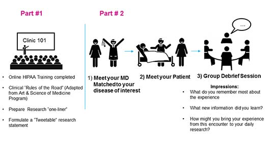 Clinical encounter graphic
